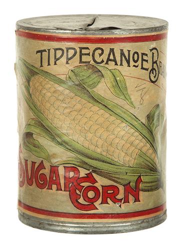Tippecanoe back
